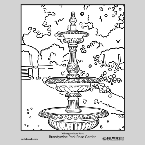 Wilmington rose garden coloring page thumbnail