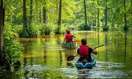 Kayakers paddle the Terrapin Branch Water Trail at Trap Pond State Park
