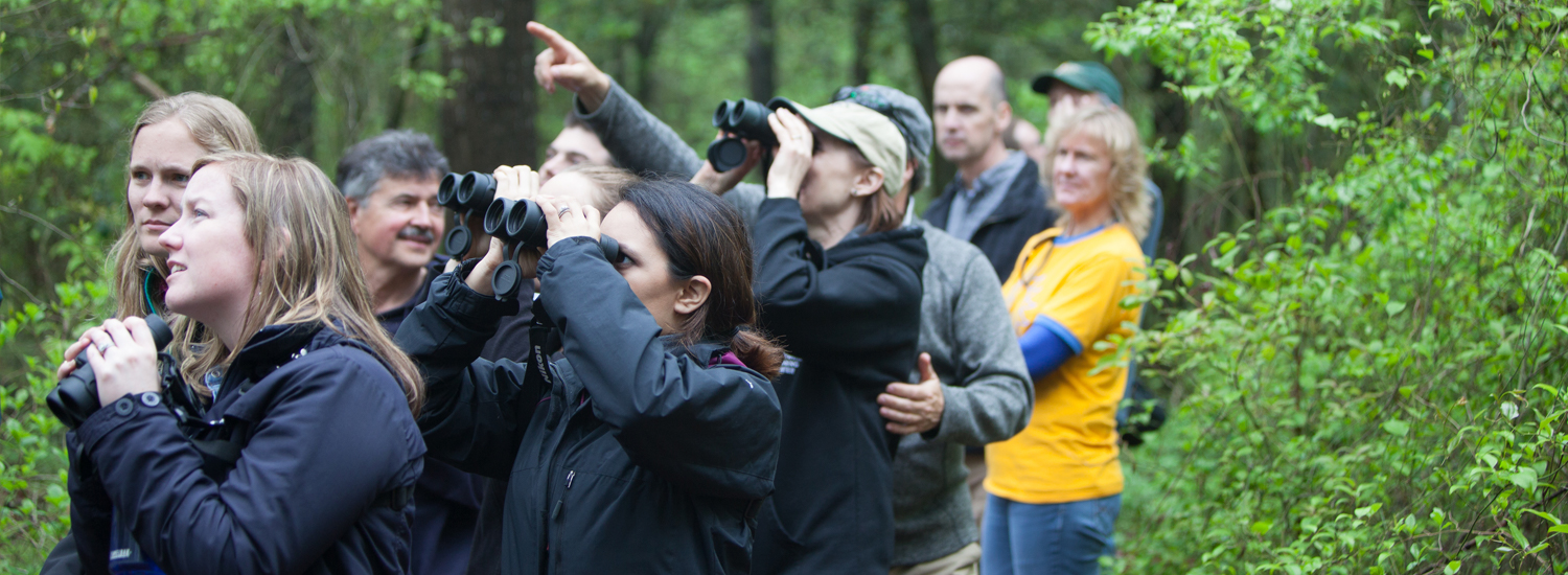 Birding at Trap Pond State Park