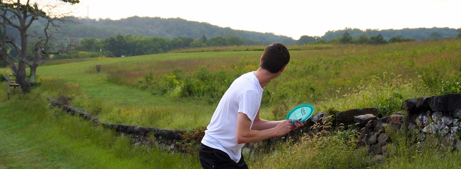 guys playing disc golf
