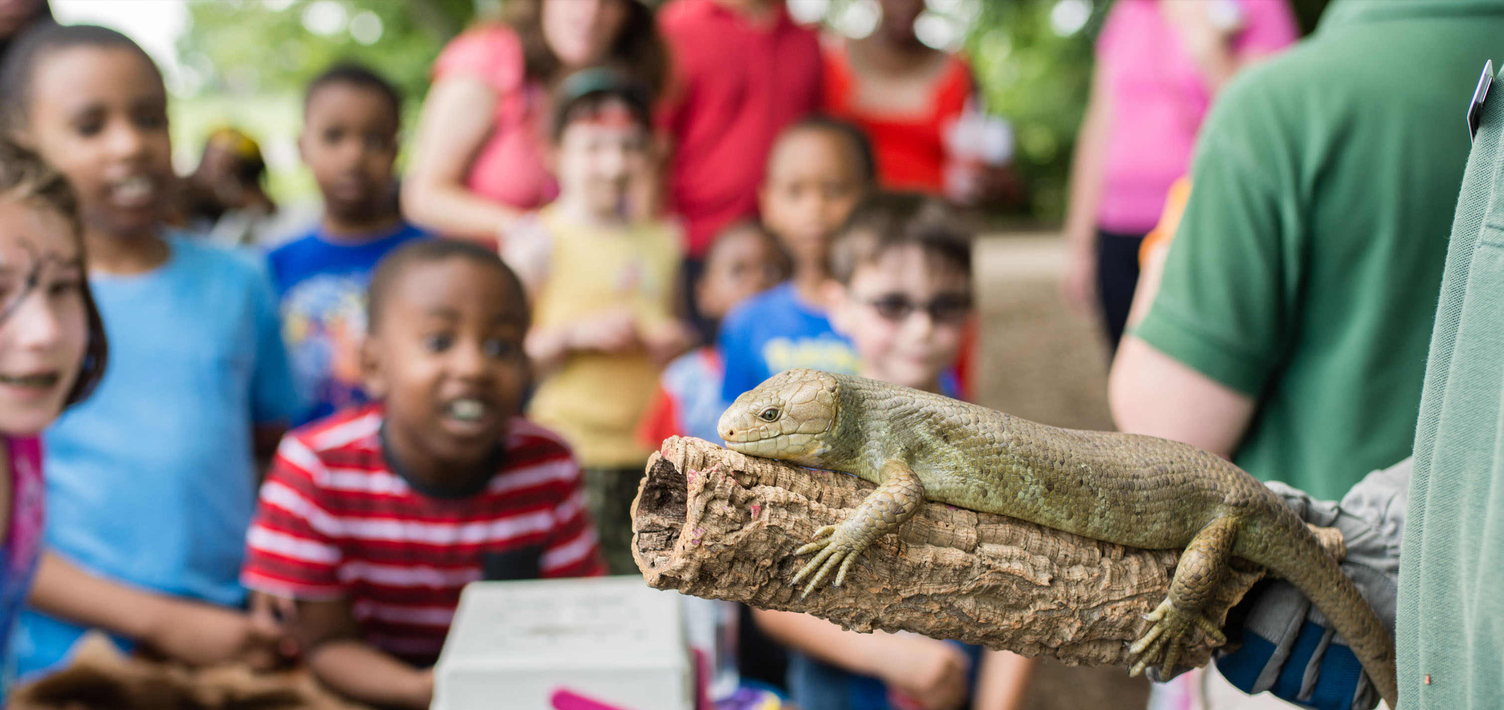 Brandywine Zoo conducting outreach programs at Alapocas Run State Park