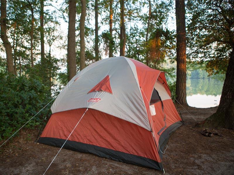 Array - home   delaware state parks  rh   destateparks com