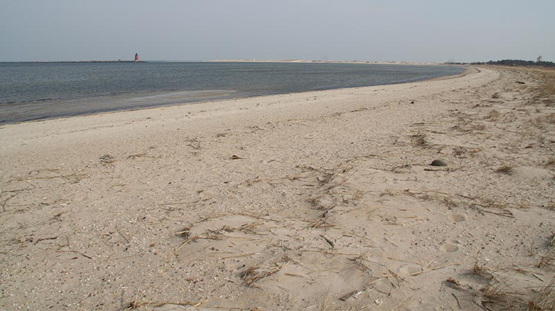 long view of the beach at cape henlopen
