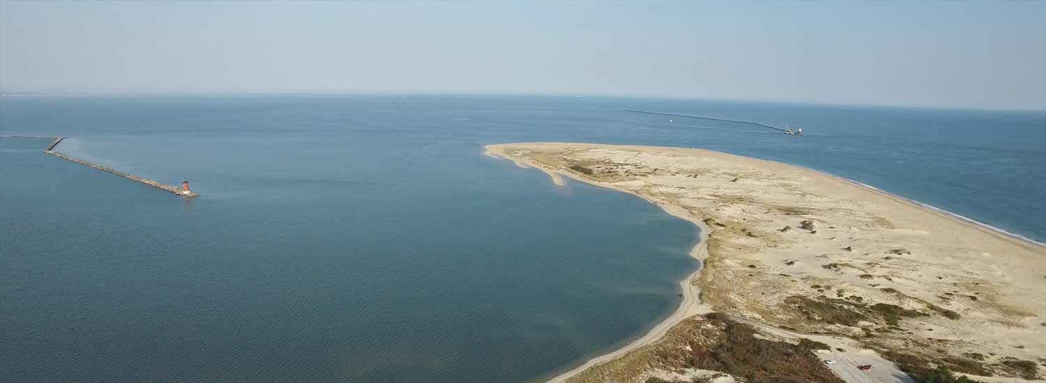 Picture of Cape Henlopen State Park