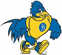 University of Delaware fightin blue hen logo