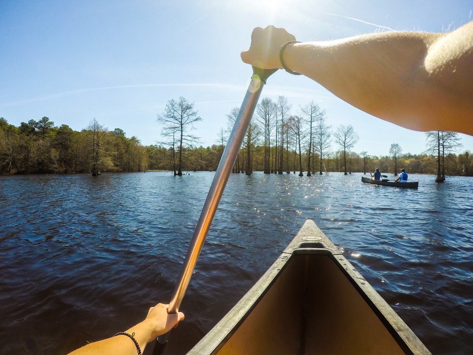 Canoing and kayaking are popular at Trap Pond State Park