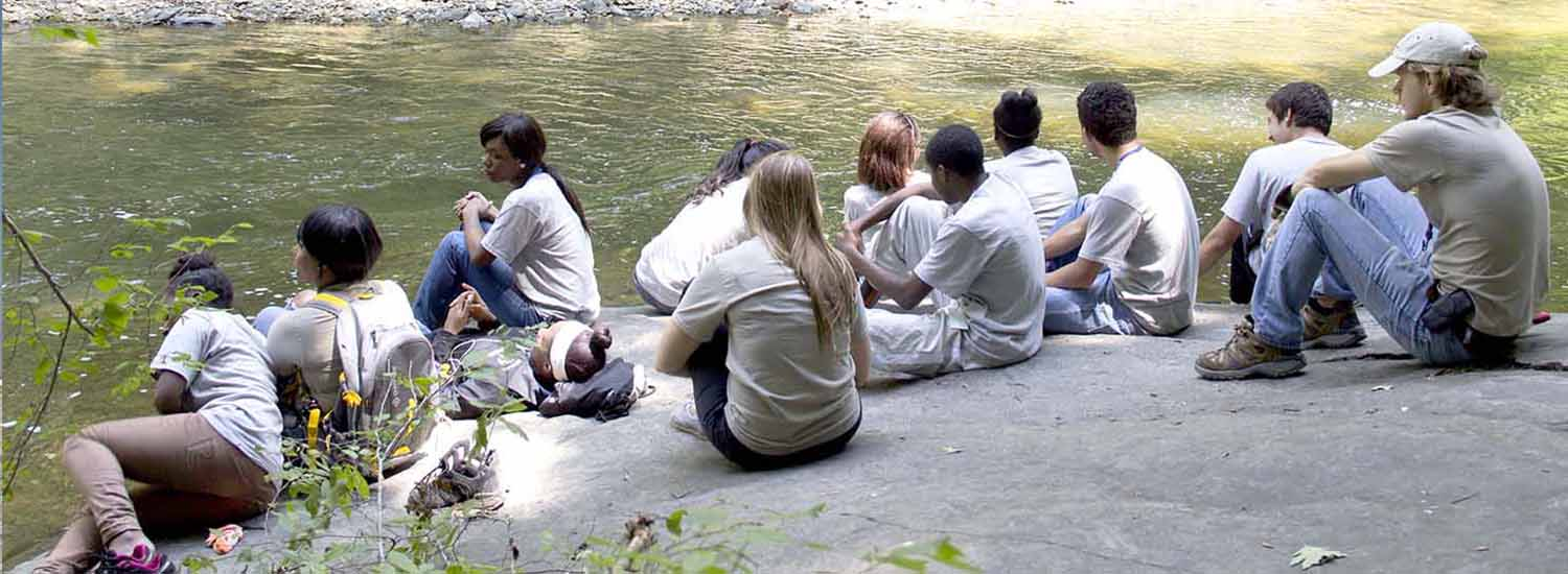 group of interns sitting along the bank of a creek