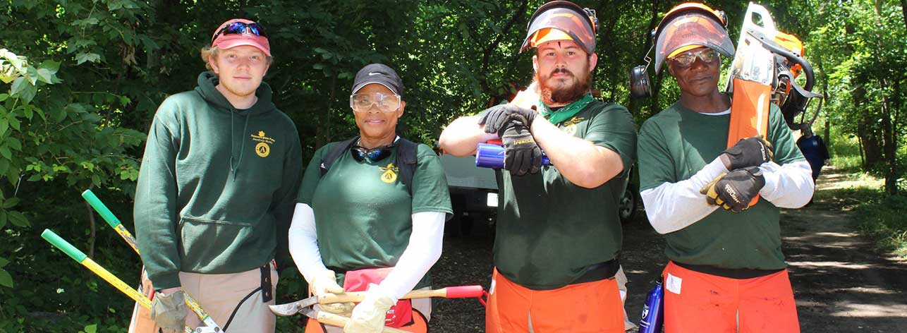 americorp group removing invasive plants